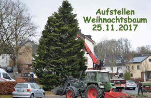 2017 Aufstellen Weihnachtsbaum