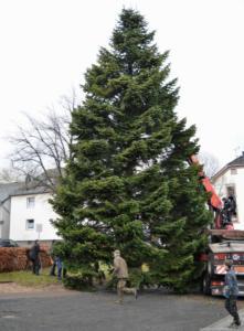 009-aufstellen-weihnachtsbaum-2017