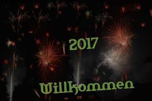 003-jahresrueckblick-2017